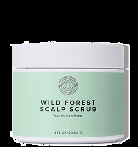 HAIRPRINT Wild Forest Scalp Scrub